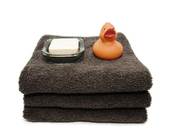 Duck on towels